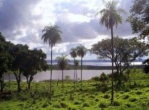 Lake-Ypacarai-1
